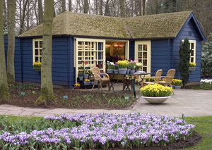florist shop and flowering bulbs